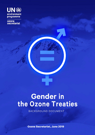 Gender in treaties
