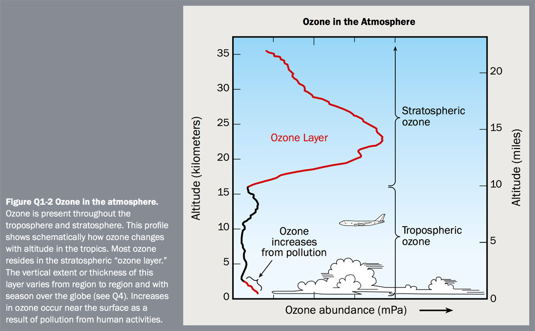 Figure Q1-2 Ozone in the atmosphere