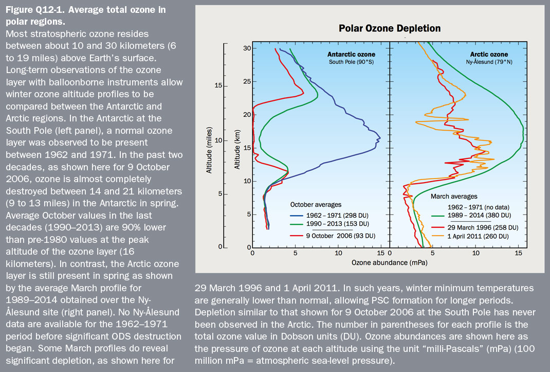 Figure Q12-3 Vertical distribution of Arctic and Antarctic ozone
