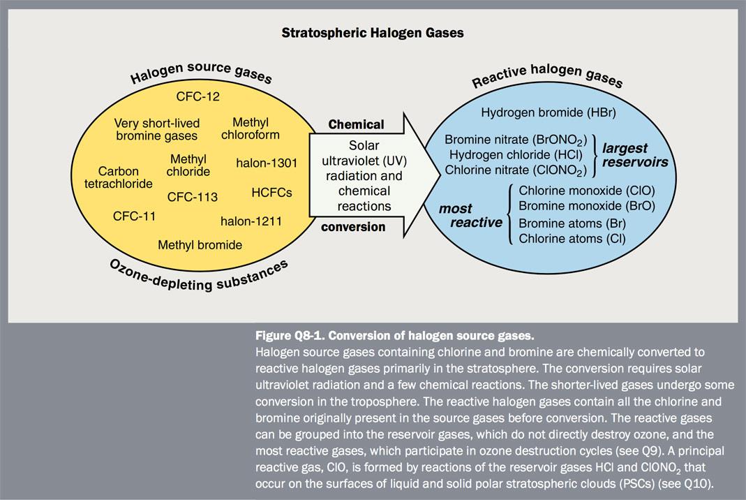 Figure Q8-1 Conversion of halogen source gases