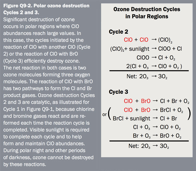 Figure Q9-2 Polar ozone destruction Cycles 2 and 3