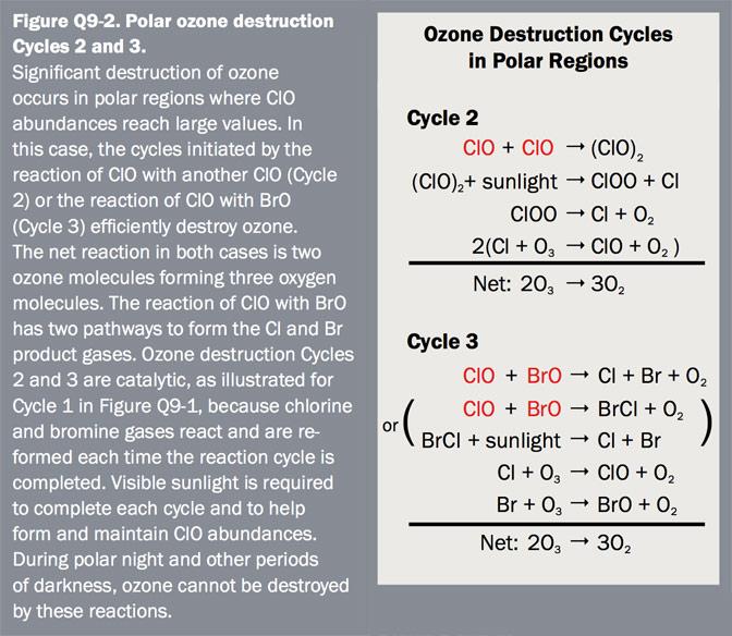 Figure Q9-2 Polar ozone destruction Cycles 2 and 3