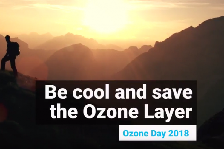 Be cool and save the ozone layer