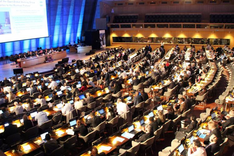 Scientific Assessment Panel of Montreal Protocol Gets New Co-Chairs